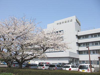 さくら-H25.jpg